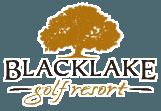 Blacklake logo